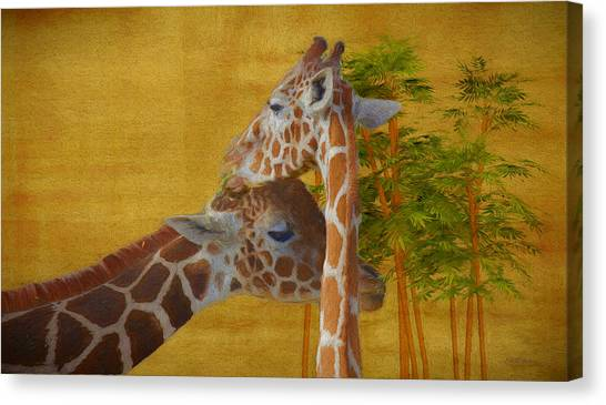 Giraffe Women Canvas Prints (Page #2 of 4) | Fine Art America