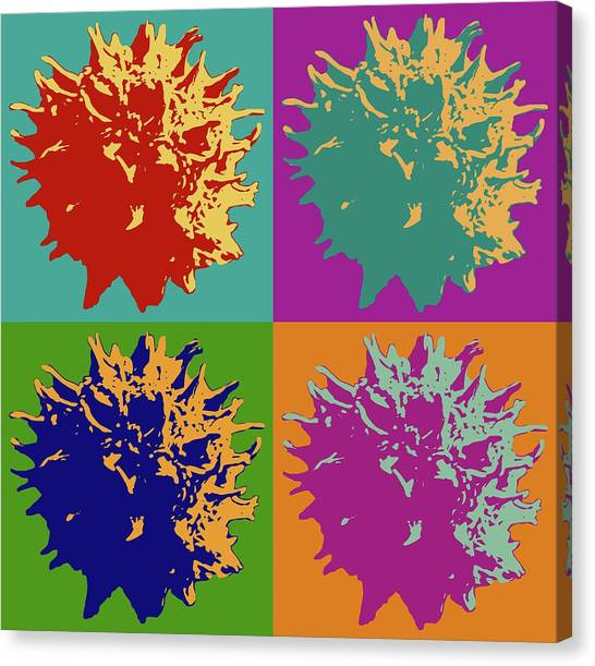 Sweet Gum Balls Canvas Print