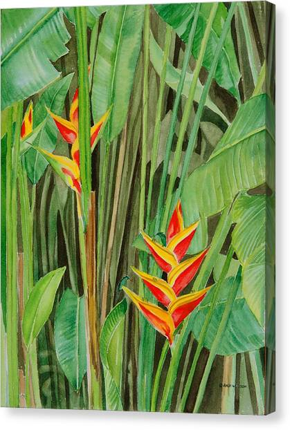 Sweet Heliconias Canvas Print by Anji Worton
