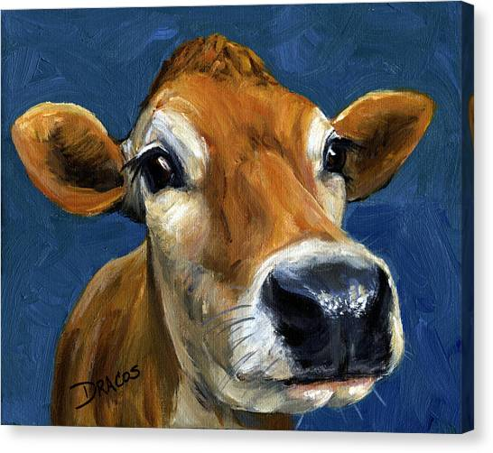 Cow Farms Canvas Print - Sweet Jersey Cow by Dottie Dracos