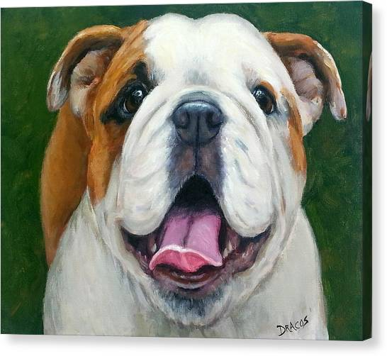 English Bull Dogs Canvas Print - Sweet Little English Bulldog by Dottie Dracos