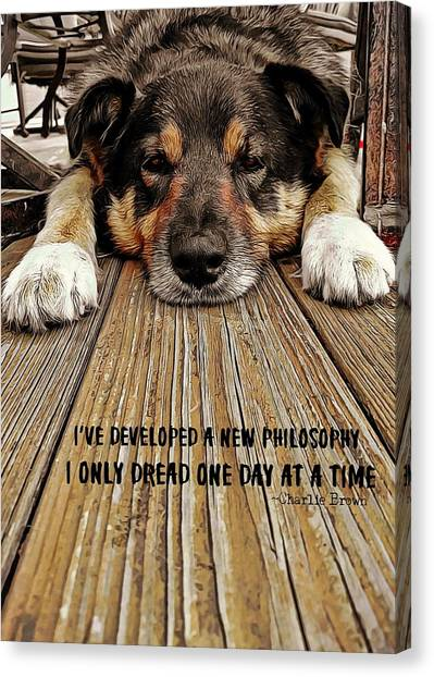 A Dogs Life Quote Canvas Print by JAMART Photography