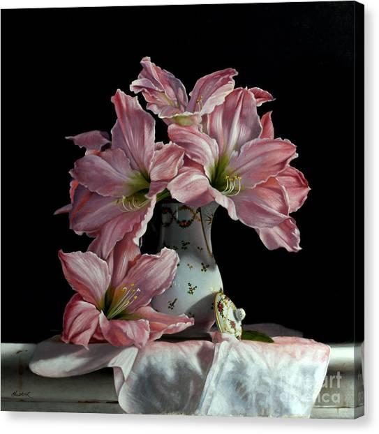 Amaryllis Canvas Print - Sweet Star Amaryllis by Lawrence Preston