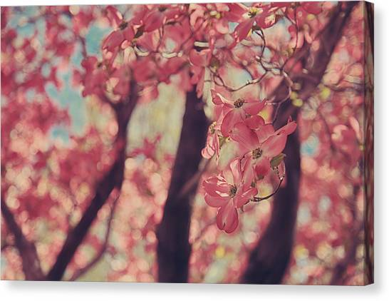 Dogwood Canvas Print - Sweet Sweet Love by Laurie Search
