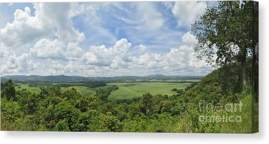 Sweet View Canvas Print