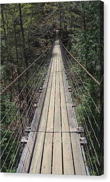 Swinging Bridge Falls Creek Falls State Park Canvas Print