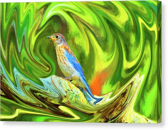 Swirling Bluebird  Canvas Print