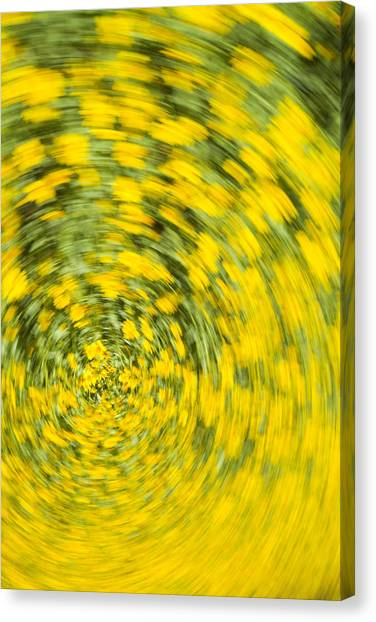 Swirling Flowers Canvas Print