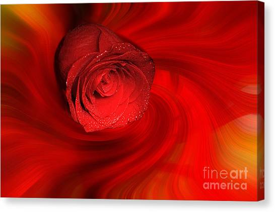 Swirling Rose Canvas Print