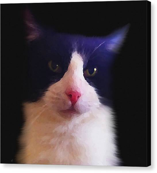 Sylvester Tuxedo Cat Canvas Print