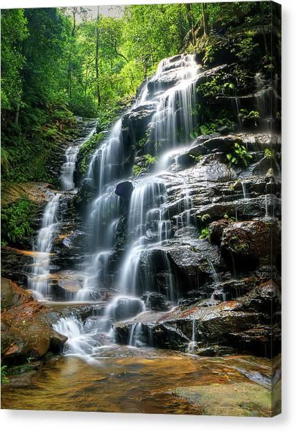 Sylvia Falls Australia Photograph By Tim Sanusi