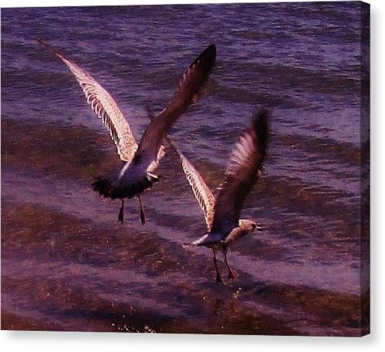 Synchronized Landing Canvas Print