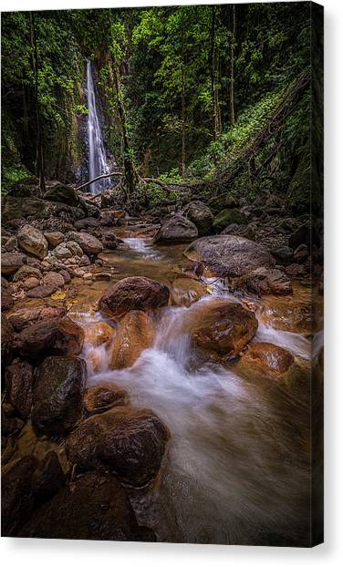 Syndicate Falls 1 Canvas Print