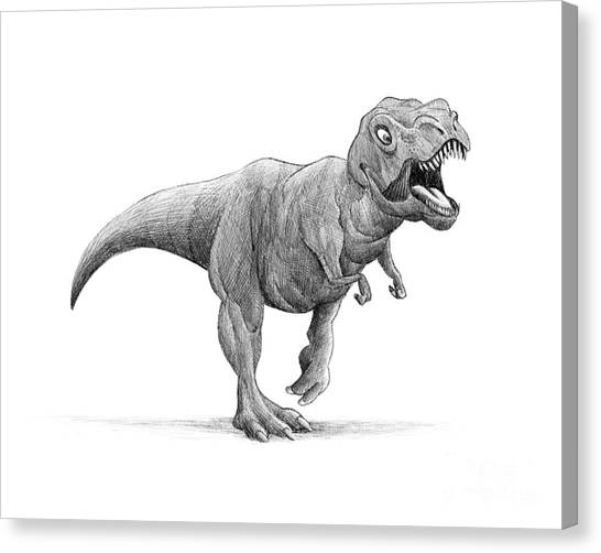 Tyrannosaurus Canvas Print - T-rex by Michael Ciccotello