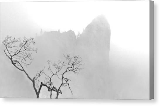 Taft Point In Mist Canvas Print