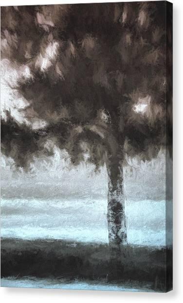 Lake Tahoe Canvas Print - Tahoe Pine Painterly Effect by Carol Leigh