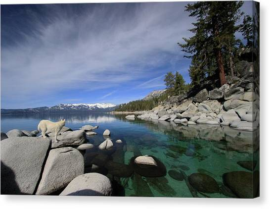 Canvas Print featuring the photograph Tahoe Wow by Sean Sarsfield