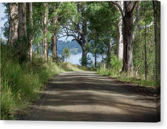 Wine Country Canvas Print - Take Me Home Country Roads by Az Jackson