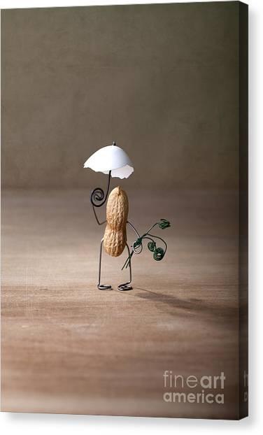 Eggshell Canvas Print - Taking A Walk 01 by Nailia Schwarz