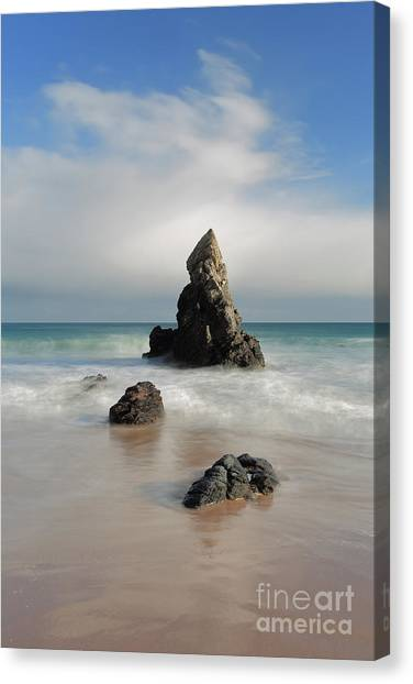 Tall And Proud On Sango Bay Canvas Print