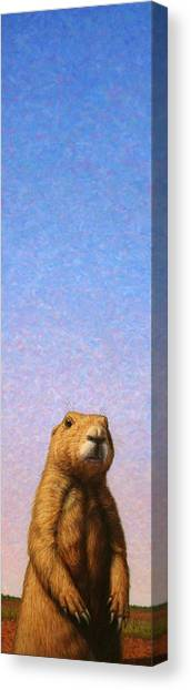 Groundhogs Canvas Print - Tall Prairie Dog by James W Johnson