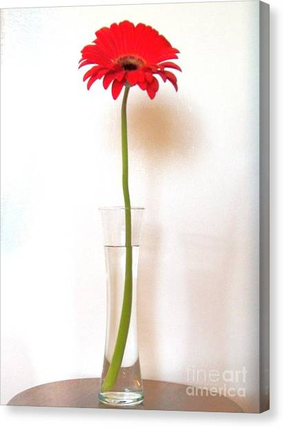 Tall Red Canvas Print