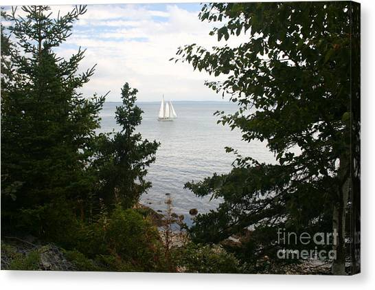 Tall Ship Canvas Print by Dennis Curry