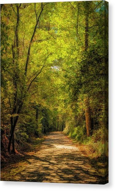 Tallulah Trail Canvas Print