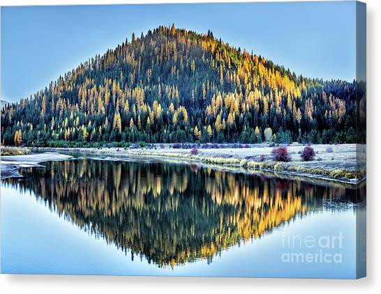 Tamarack Glow Idaho Landscape Art By Kaylyn Franks Canvas Print