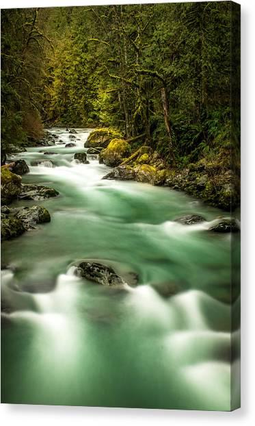 Tamihi Creek Canvas Print