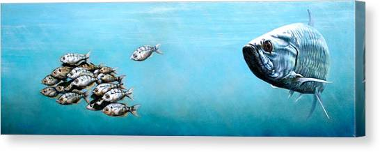 Florida Wildlife Canvas Print - Tampa Bay Tarpon by Joan Garcia