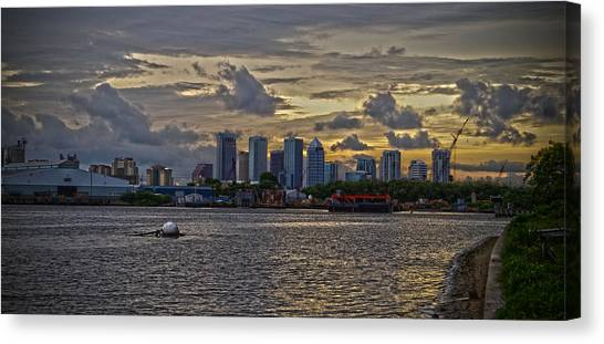 Tampa Skyline Canvas Print by Chauncy Holmes