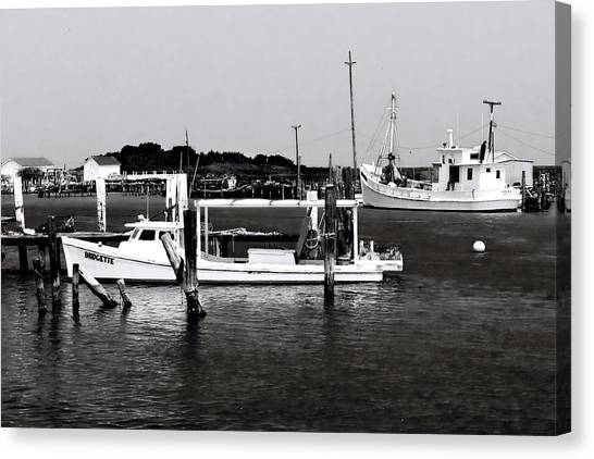 Tangier Island 3 Canvas Print by Alan Hausenflock