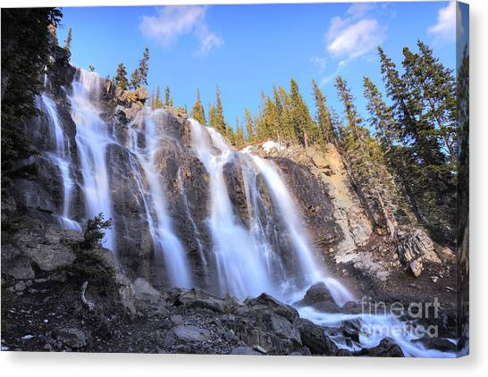 Tangle Falls Canvas Print