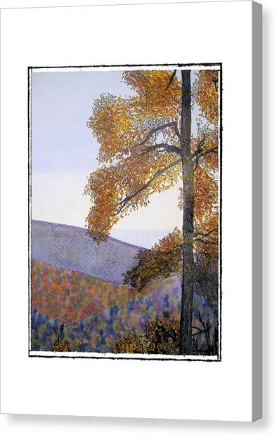 Tapestree Canvas Print by Robert Boyette