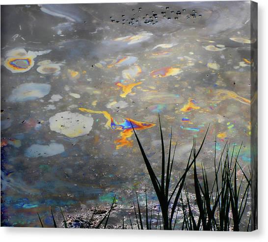 Tar Pit's Beauty I Canvas Print