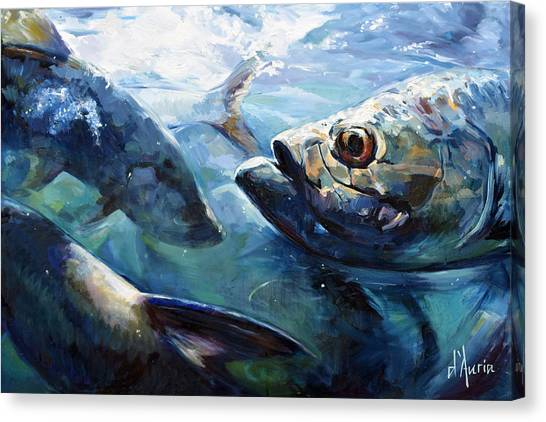 Saltwater Life Canvas Print - Tarpon by Tom Dauria