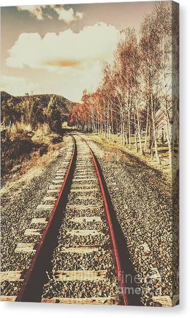 Countryside Canvas Print - Tasmanian Country Tracks by Jorgo Photography - Wall Art Gallery