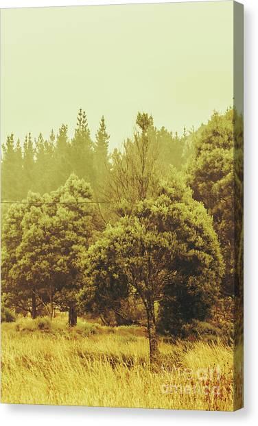 Rural Canvas Print - Tasmanian Grassland Details by Jorgo Photography - Wall Art Gallery