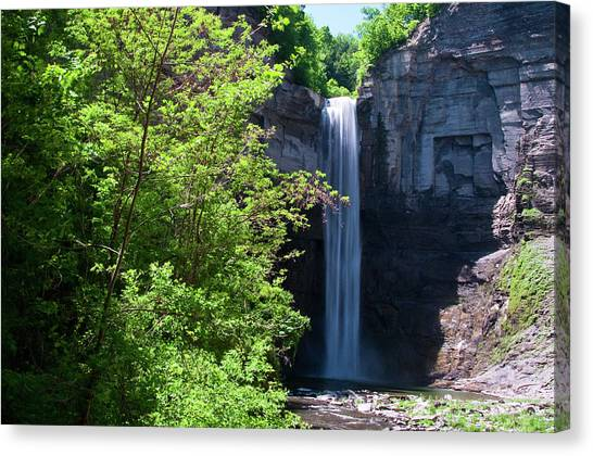 Taughannock Falls 0466 Canvas Print
