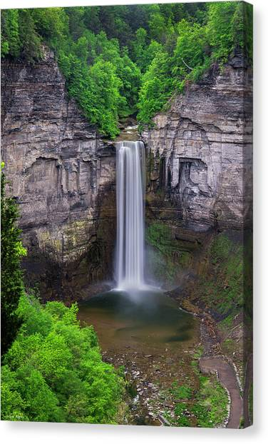 Taughannock-summer Canvas Print