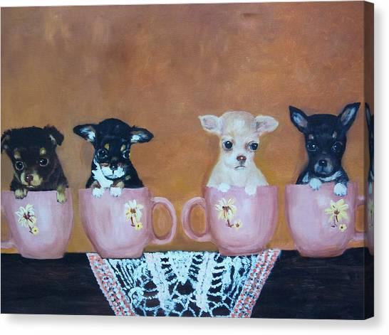 Tea Cup Chihuahuas Canvas Print