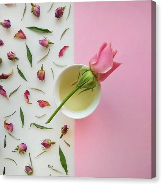 Tea Leaves Canvas Print - Rose Tea by Ann Foo
