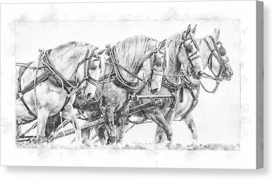 Canvas Print featuring the digital art Team Work by Brad Allen Fine Art