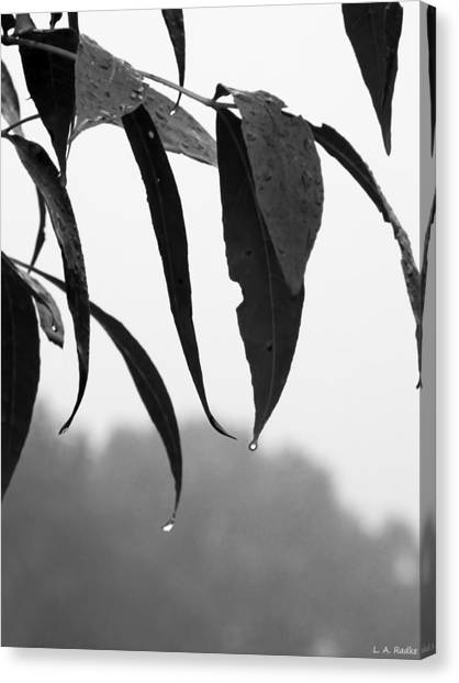 Tears Canvas Print