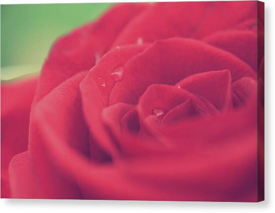 Tears Of Love Canvas Print