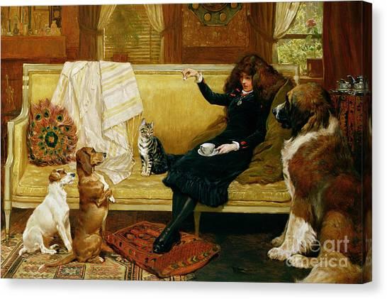 St. Bernard Canvas Print - Teatime Treat by John Charlton