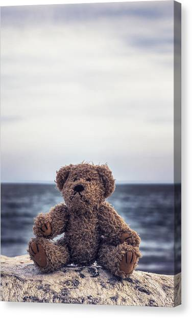 Care Bears Canvas Print - Teddy Bear At The Sea by Joana Kruse
