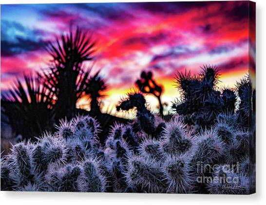 Teddy Bear Cholla Canvas Print