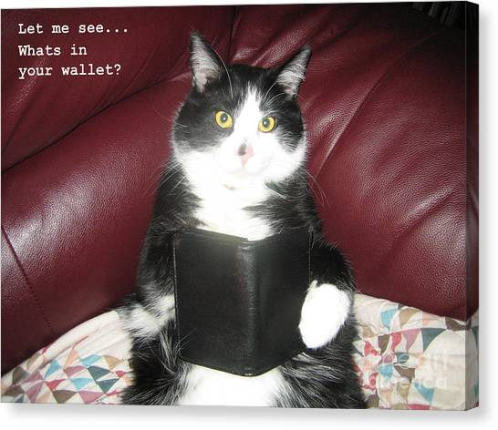 Teddy The Ninja Cat Wants To Know Whats In Your Wallet  Canvas Print by Reb Frost